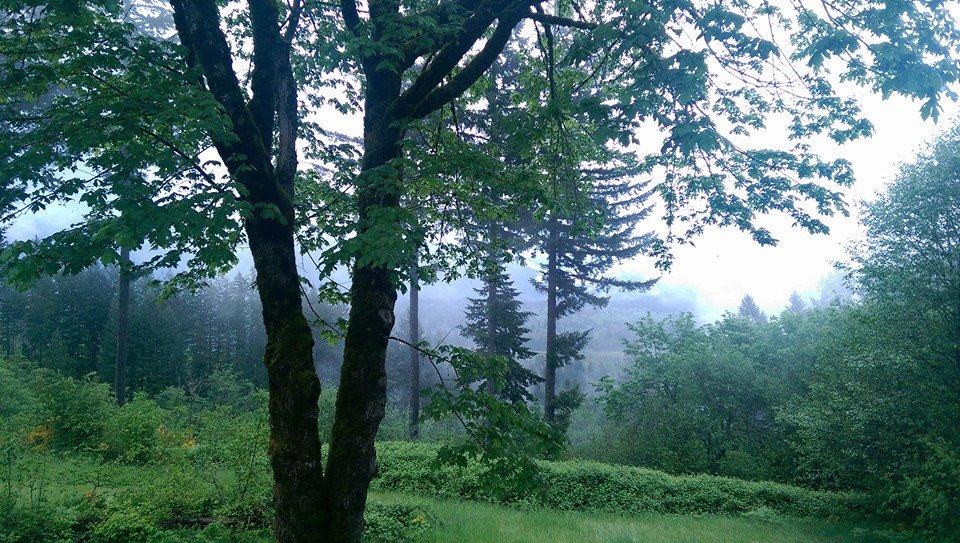 Hilltop in the rain